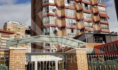 Apartamento de alquiler en Gerona, 3, Benidorm