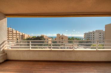 Wohnungen miete in Cas Català - Illetes - Portals Nous