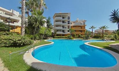 Pisos de alquiler con piscina en Torrevieja