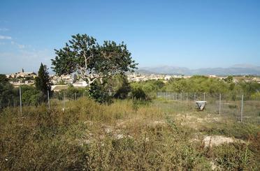Grundstücke zum verkauf in Llubí