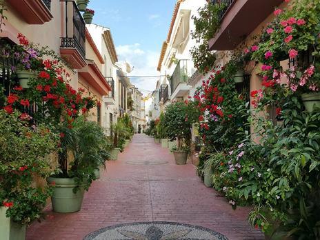 Estudios en venta en Estepona