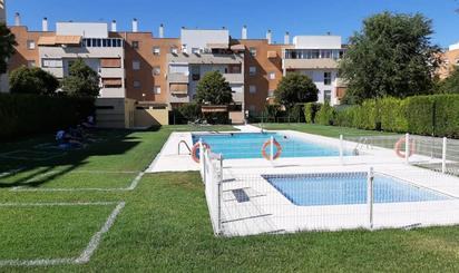 Viviendas y casas de alquiler en Mairena del Aljarafe
