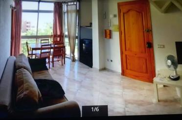 Wohnung miete in Carrer Miquel Dels Sants Oliver, Calvià