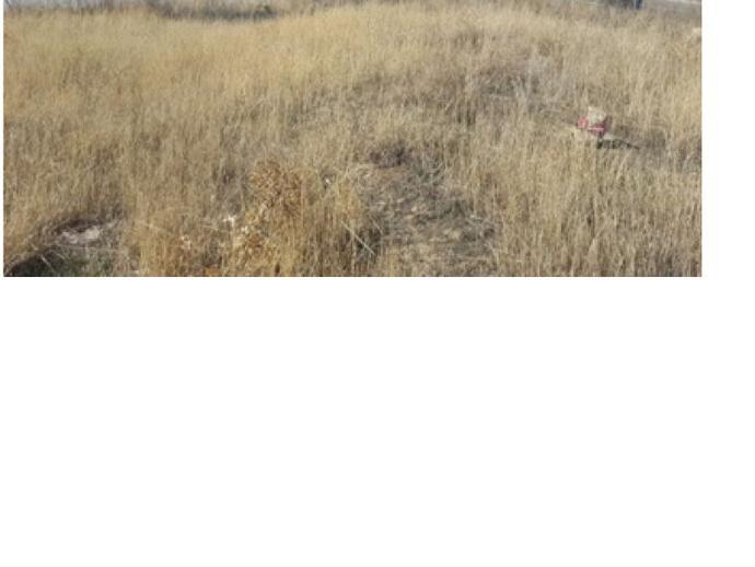 Foto 1 de Terreno en A-5 Campodón - Ventorro del Cano