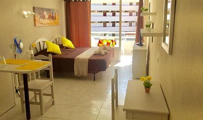 Estudios de alquiler en Tenerife