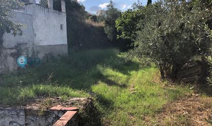 Casa o chalet en venta en Arenas del Rey