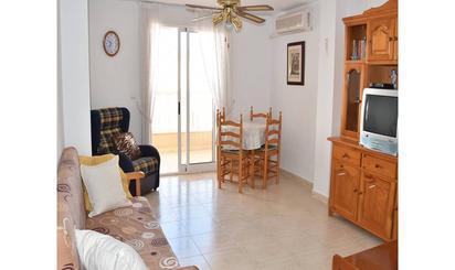 Áticos de alquiler en Torrevieja