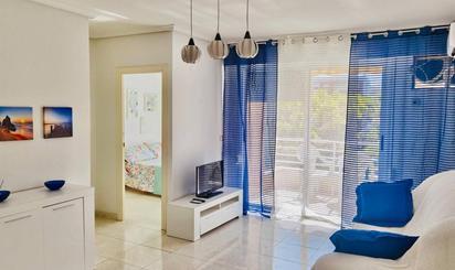 Apartamento de alquiler en Galeon, 4, Torrevieja
