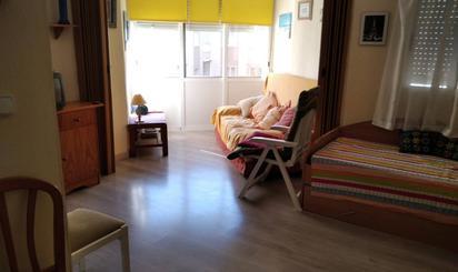 Estudio de alquiler en Habaneras, 38, Torrevieja