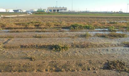 Grundstuck zum verkauf cheap in Albalat dels Sorells