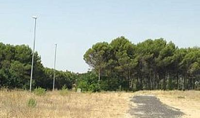 Terrenos en venta en Santorcaz