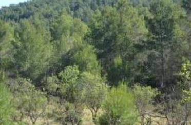 Grundstücke zum verkauf in Espadilla