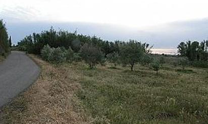 Terrenos en venta en Figueruelas