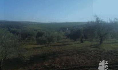 Grundstücke zum verkauf in Fuente del Maestre