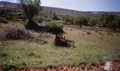 Grundstuck zum verkauf in Ribera del Duero