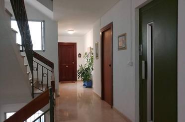 Wohnung zum verkauf in Bonrepòs i Mirambell