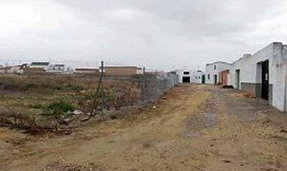 Terreno en venta en Castilleja del Campo