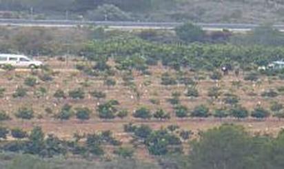 Grundstücke zum verkauf in Benlloch