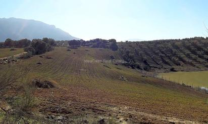 Terreno en venta en Bo la Mariandana, Archidona