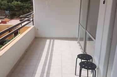 Wohnungen miete in Carrer Miguel Machado, 3, Calvià