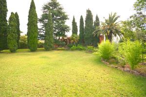 Alquiler Vivienda Casa-Chalet los monasterios