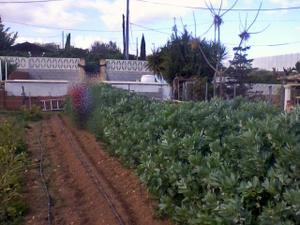 Venta Terreno Terreno Residencial urb. delicias del realon