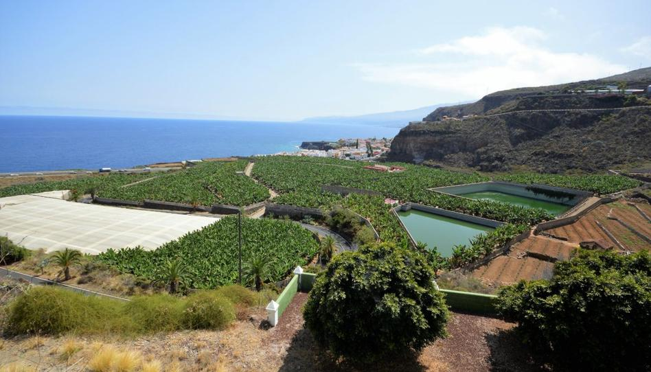 Foto 1 de Finca rústica en venta en San Juan de la Rambla, Santa Cruz de Tenerife