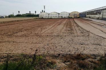 Terreno en venta en Albalat dels Sorells