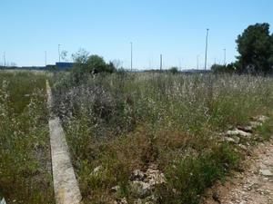 Venta Terreno  la plana baixa - villarreal/vila-real