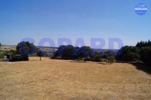 Terreno Residencial en Venta en Villaviciosa de Odón - El Bosque / El Bosque