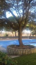 Piso en Venta en Guadiana, 115 / El Bosque