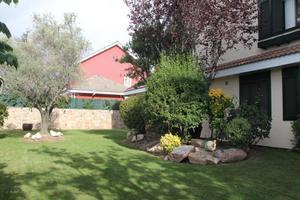 Alquiler Vivienda Casa-Chalet montellano