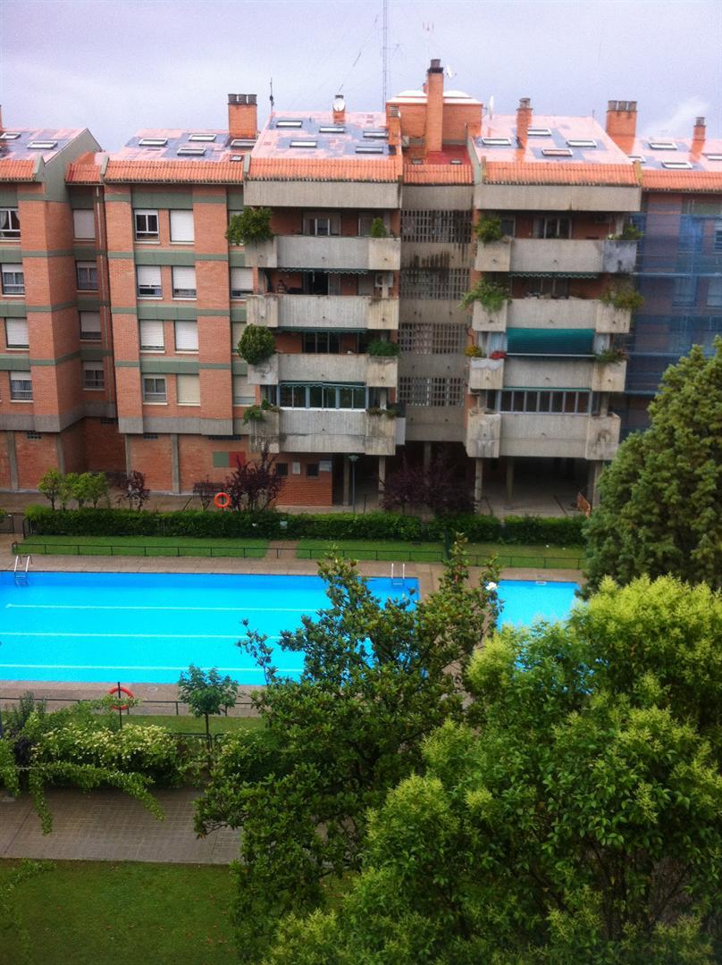 Pisos en venta pisos de 5 hab en zaragoza capital zona de for Milanuncios pisos zaragoza