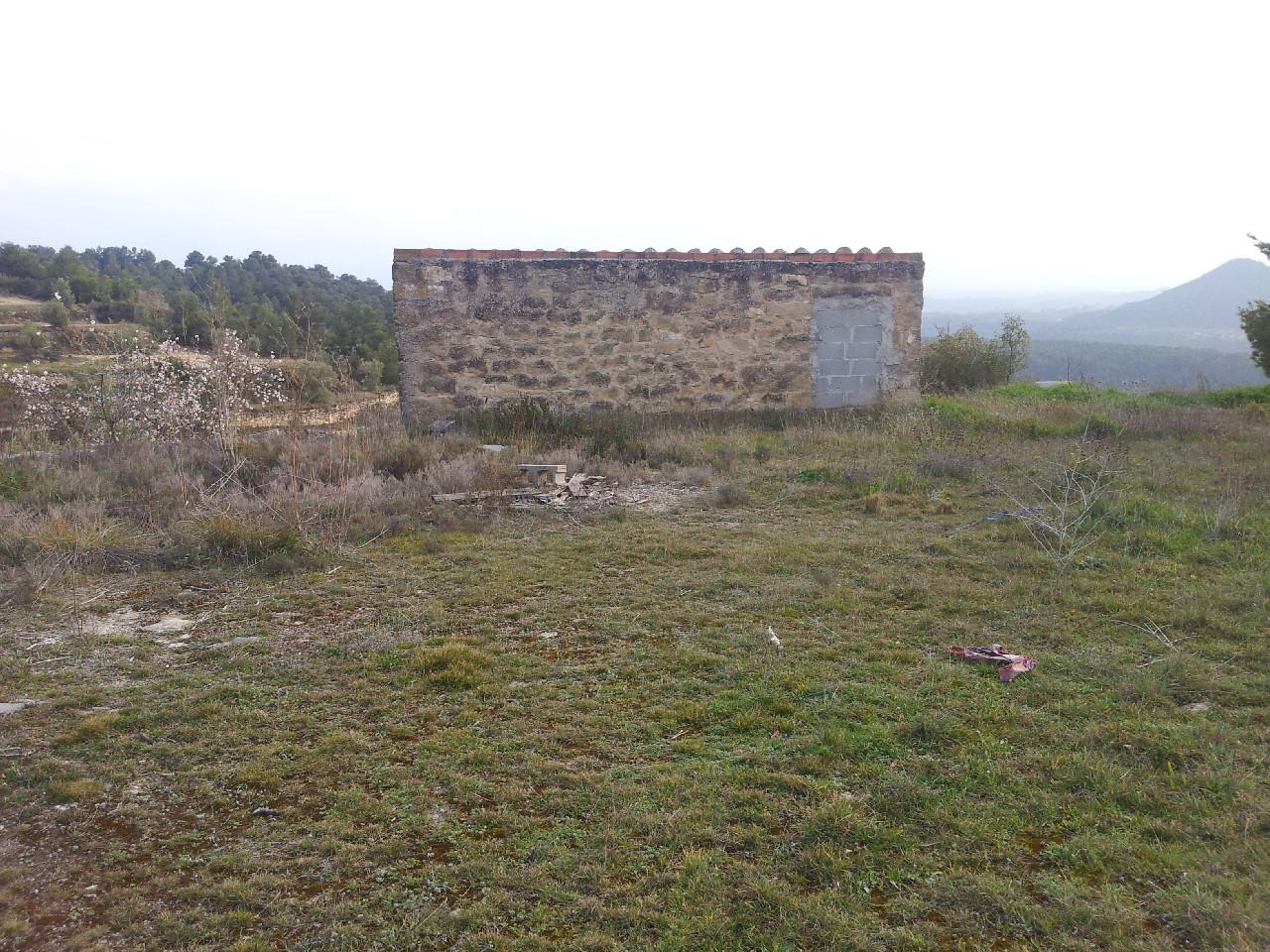 Solar urbà  Garrigues - Vinaixa. Finca rústica d'oliveres, ametllers i part boscosa, amb una gran