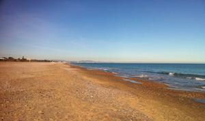 Venta Terreno Terreno Urbanizable playa de almarda - sagunto/sagunt