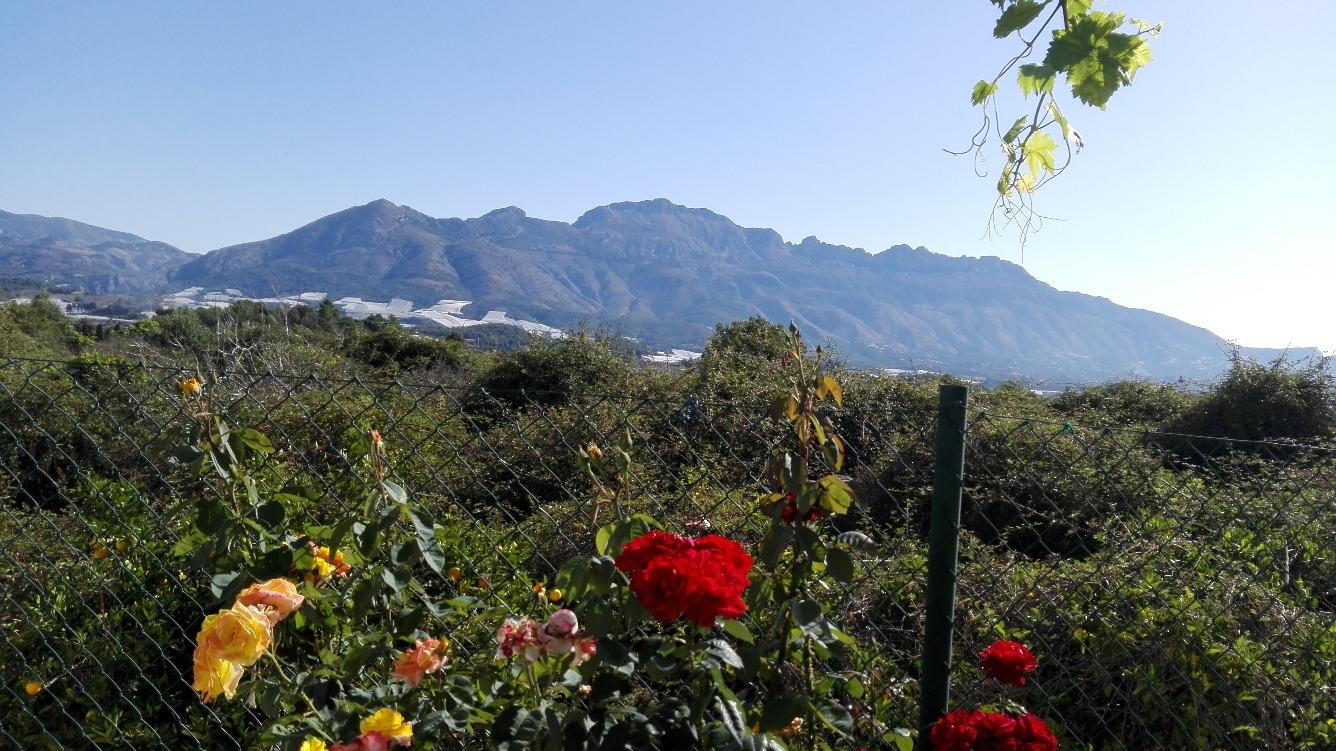 Bungalow en La Nucia