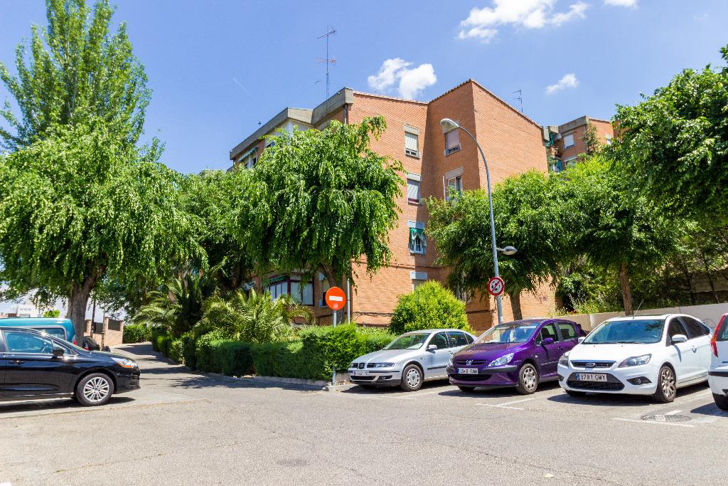 Piso en Calle COLONIA DE LOS ALMENDROS