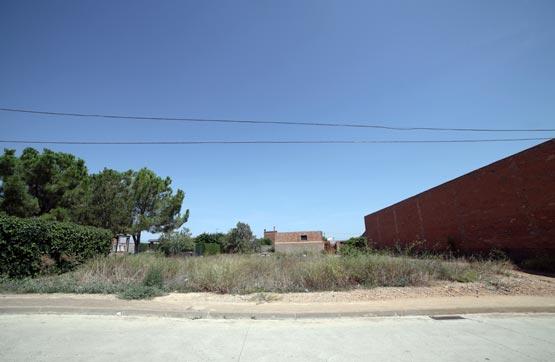 Suelo en Calle ALGUAIRE