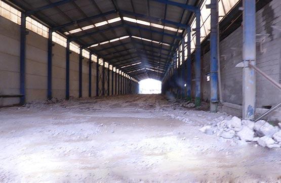 Industrial - Nave industrial en Carretera de garrucha