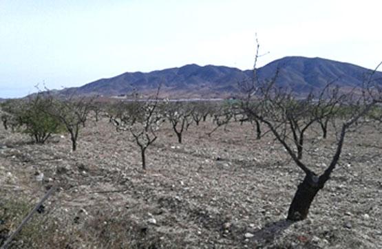 Suelo en Sector Paraje Torrejon,Poligono-12 Parcela-1770