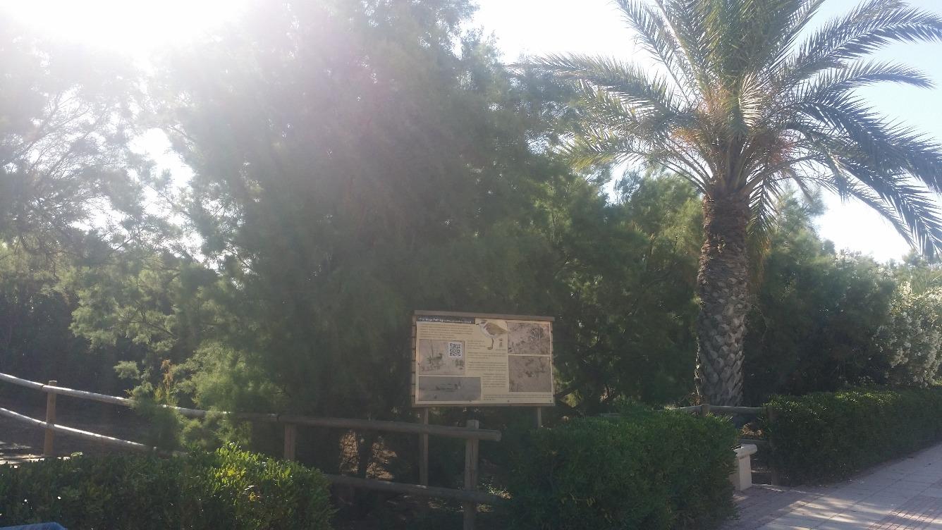 Piso en Calle ERMITA