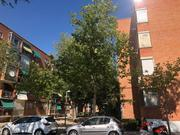 Piso en alquiler  en  Calle Parque Eboli, Pinto