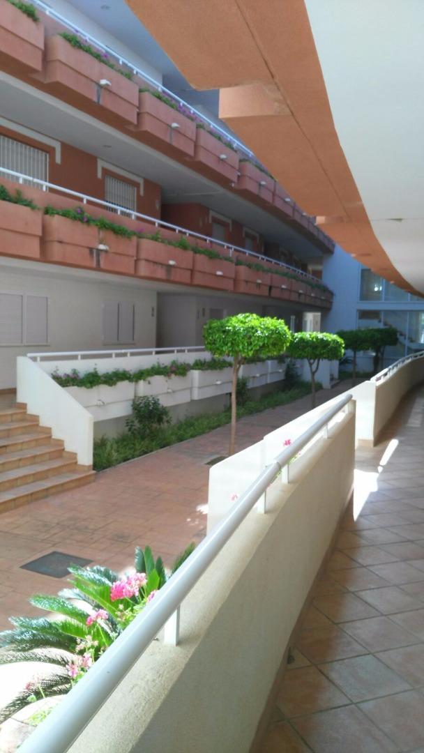 Planta baja en Avenida CIUDAD DE ALICANTE, RESIDENCIAL VERA GARDEN