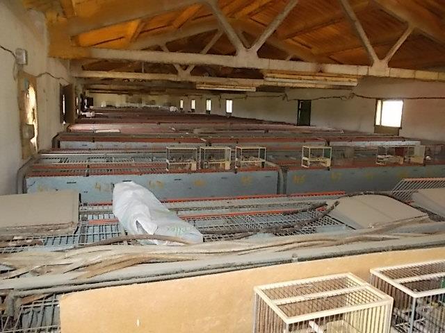 Maison  Alcarràs, zona de - soses. Casa de pueblo reformada de 100 m2 con almacén y garaje con gran
