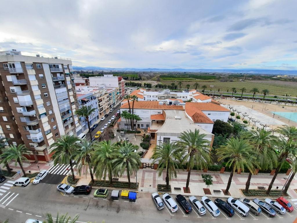 Plantas intermedias en venta en Alzira