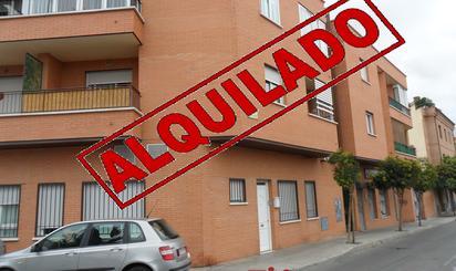 Apartamentos de alquiler en Pinto