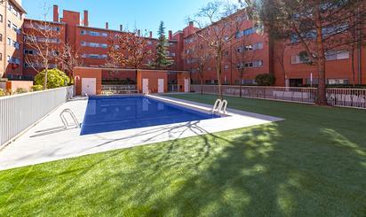 Plantas bajas de alquiler en Madrid Provincia