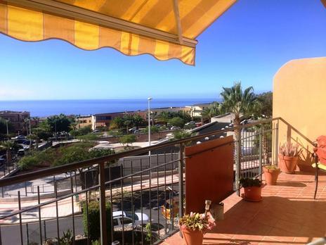 Plantas intermedias en venta en Tenerife