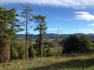 Venta Terreno Terreno Urbanizable resto provincia de vizcaya - gernika-lumo