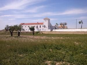 Finca rústica en Venta en La Manchuela (Albacete) - Casas de Juan Núñez / Casas de Juan Núñez